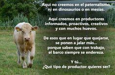 (129) Ganadería y Agricultura - Fotos