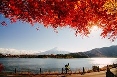 河口湖 Lake Kawaguchi, at the foot of mount Fuji, Japan.
