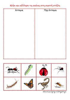 Στάση νηπιαγωγείο: Έντομα Insect Crafts, Bugs And Insects, Chart, Map, Blog, Education, Ideas, Bug Crafts, Location Map