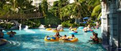 Hilton Rose Hall Resort & Spa in Jamaica http://www.best-family-beach-vacations.com/hilton-rose-hall-resort.html