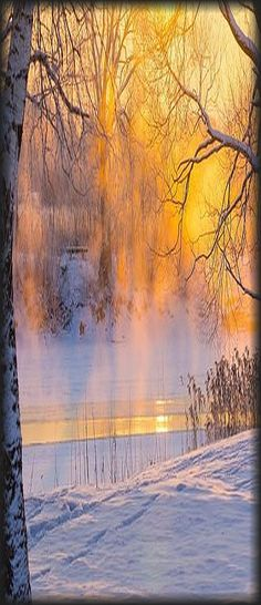 sunset winter snow frosty #via: 500px.com