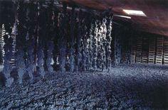 Виноград для производства Амароне сушится до 4 месяцев в хорошо проветриваемых помещениях