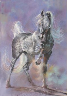 Silver Storm by on DeviantArt Horse Drawings, Art Drawings, Arabian Art, Arabian Horses, Arabian Stallions, Colored Pencil Artwork, Horse Books, Horse Face, Cowboy Horse