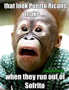 Hilarious pic with joke quote. For the best humor and short funny jokes visit… Funny Animal Faces, Funny Animal Pictures, Funny Images, Funny Animals, Bing Images, Funny Pics, Funny Stuff, Humorous Pictures, Funniest Animals