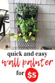 Budget friendly guest bedroom easy wall planter idea for only $5. Using chains and felt we love this quick and creative idea for making a hanging wall planter for cheap. Perfect planter for small rooms. Diy Wall Planter, Hanging Wall Planters, Diy Hanging, Wine Bottle Wall, Toy Storage Solutions, Gaming Wall Art, Diy Wall Art, Wall Decor, Plant Shelves