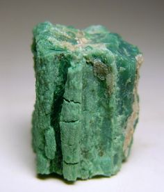 Petrified wood with green color from chromium-containing minerals