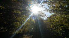 Počasie Malacky http://pocasie.pozri.sk/predpoved-pocasia/malacky