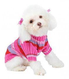 crochê e tricô para pets - Pesquisa Google