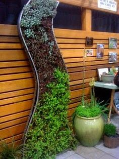 Love the organic shape of this vertical succulents garden.  How do I DIY this type of look?