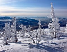 Sheregesh. Siberia. Winter Photography, Scenery Photography, 7 Continents, Snow Fun, Winter Scenery, Winter Is Coming, Plan Your Trip, Ecology, Arctic