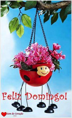 Ladybug Hanging Garden Planter Decoration Collections Etc…