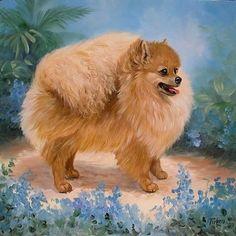 Gallery.ru / Фото #151 - Собаки. - Loraroza