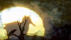Ήσουνα φεγγάρι - Μαρία Δημητριάδη