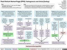 Post-Partum Hemorrhage (calgaryguide.ucalgary.ca). Nursing School Notes, Ob Nursing, Maternity Nursing, Midwife Training, Postpartum Hemorrhage, Obstetrics And Gynaecology, Nursing Students, Medical Students, Nclex