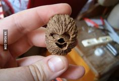 May the force be with you.. #starwars #chewy #walnut