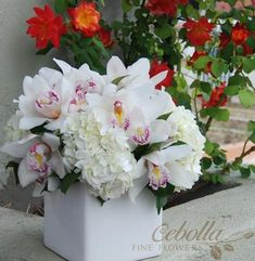 Hydrangea and orchid flower arrangement to spread across the wedding party table