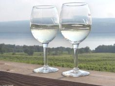 Finger Lakes wine tour for a bachelorette party!? Dont mind if I do!