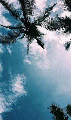 Beach vibes costa rica photos baggrunde, smukke steder и ste Tumblr Wallpaper, Blue Wallpaper Iphone, View Wallpaper, Blue Wallpapers, Aesthetic Iphone Wallpaper, Nature Wallpaper, Aesthetic Wallpapers, Wallpaper Backgrounds, Iphone Backgrounds