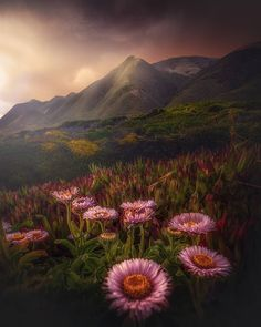 Attractive Mountscape and Nature Landscape Photography by Gabe Rodriguez #photography #mountscape