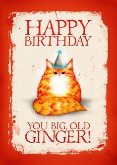 Birthday cat card: Happy Birthday You Big Old Ginger. via Etsy. Cat Birthday Wishes, Birthday Greetings Friend, Birthday Jokes, Birthday Wishes Messages, Birthday Cards, Happy Birthday Ginger, Happy Birthday Girls, Happy Birthday Pictures, First Birthday Balloons