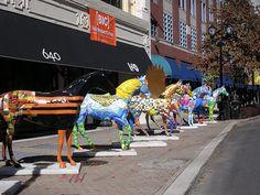Gallopalooza Horses Louisville Ky
