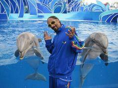 Snoop dolphin' dog