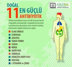 Bağışıklık Sistemini Güçlendiren 11 Doğal Besin to health articles Health And Fitness Articles, Health Tips, Health Care, Natural Medicine, Herbal Medicine, Fitness Diet, Health Fitness, Healthy Life, Healthy Living