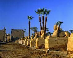 Tour Luxor. Visita de templo de Luxor construido por Ramses II #visita_Luxor #tour_Luxor #Luxor #Egipto  http://www.maestroegypttours.com/sp/Excursi%C3%B3nes-en-Egipto/Luxor-Excursiones