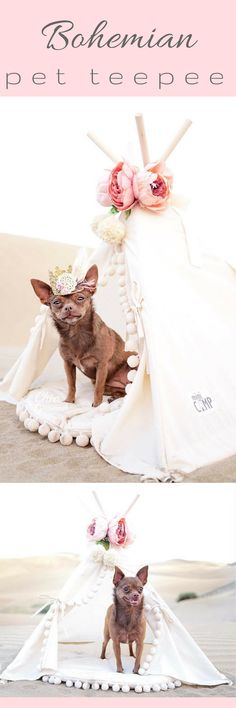 Boho pet teepee with matching pom pom mat. Super cute for cats, small dogs, and bunnies or guinea pigs. Beautiful style to match your pretty apartment and perfect to utterly spoil your best friend  #affiliate #dogs #cats #bunny #rabbits #petbeds #bohemiandesign #petlover