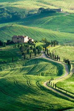 Tuscany. I can see myself driving these curvy roads in a vintage roadster convertible!