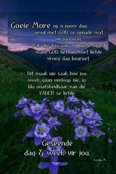 Lekker Dag, Evening Greetings, Afrikaanse Quotes, Goeie More, Good Morning, Poems, Wisdom, Van, Inspiration
