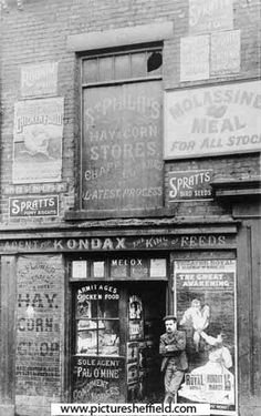 Mrs Emma Flower's Hay, Straw and Animal Feed shop, No. 80, Upper St.Philip's Road