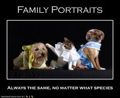Family Portraits: always the same, no matter what species