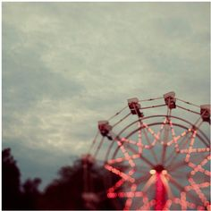 Ferris Wheel Photograph (51 AUD) ❤ liked on Polyvore featuring home, home decor, wall art, photo tree, tree home decor, photo wall art and tree wall art