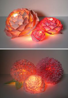 Paper Flowers with lights. Nighttime sweet!