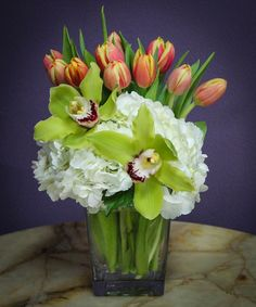 Spring Zing-Add a little zing to someone's day by sending a cute spring arrangement with tulips, hydrangea and cymbidium orchid blooms.  #BreensFlorist #HoustonFlowers #SpringFlowers