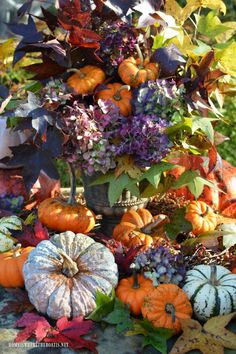 Weekend Waterview: Fall's Last Hurrah and Arrangement Happy Weekend, Weekend Is Over, Fall Vignettes, Fall Projects, Happy Fall Y'all, Green And Orange, Fall Halloween, Warm And Cozy, Floral Arrangements