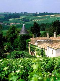 Winery tour in France