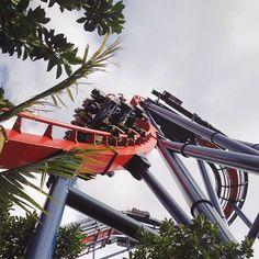 12 alternativas de parques de diversão além da Disney World - Busch Gardens, em Williamsburg, Virgínia, nos EUA