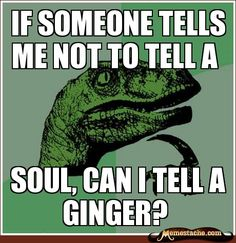 For my ginger husband, teasing about his hair color NEVER gets old. :)