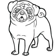 Pugs free colouring pages for Cute pug coloring pages
