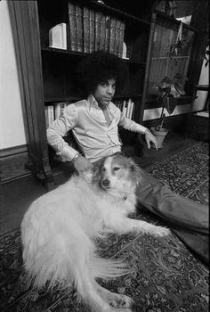 #Prince #Dogs #AnimalLover #FurBaby