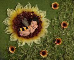 3 JPG files Sunflower Digital backdrop digital background newborn – Keisha Miller – New and Popular Images Newborn Baby Photography, Newborn Photos, Fall Newborn Pictures, Baby Kicking, Foto Baby, Digital Backdrops, Pregnant Mom, Jolie Photo, Photos Du