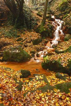 Bohemian Switzerland National Park, Czech Republic | Thanksgiving 2011