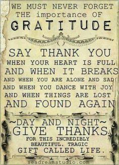 Say thank you and have an attitude of gratitude every day! #Free2Luv
