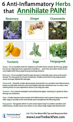 6 Anti-Inflammatory Herbs for Pain #Infographic
