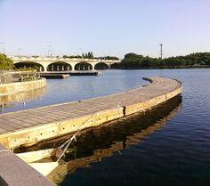 'The lakepark' in Ilsan 5
