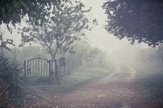 The foggy road leading to evil Sir Henry's cottage. Story Inspiration, Far Away, Pretty Pictures, Mists, Paths, Art Photography, Scenery, Beautiful Places, Fantasy