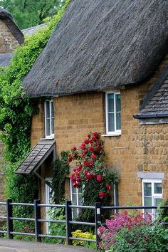 English Country Cottage ~ thatched roof, climbing roses