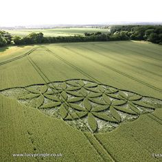 Crop circle photo by Lucy Pringle